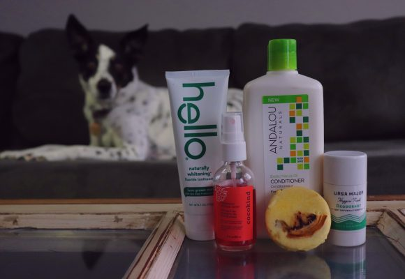 Favorite Cruelty-Free Finds: March 2019