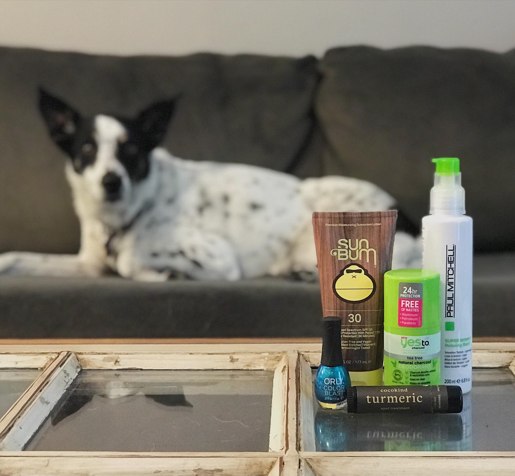 Favorite Cruelty-Free Finds: April 2019