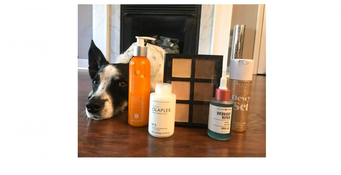 Favorite Cruelty-Free Finds: February 2020